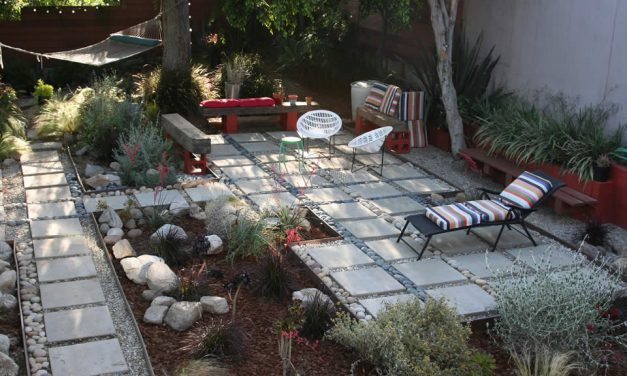 Watering gardens with greywater – plants that like greywater